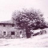beurko-antiguo-7